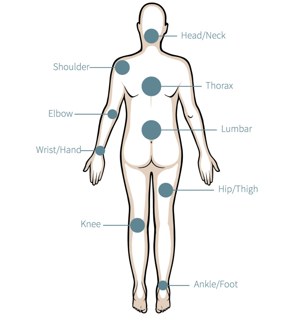 Top-rated Clinical Pattern Recognition : Orthopaedic Suite ...