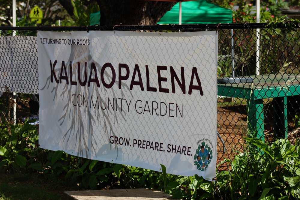 Mala O Kaluaopalena Community Garden    At the Towers at Kuhio Park   Linapuni Street (across from Linapuni Elementary)  Honolulu, HI 96819  Hours: Wednesday 1pm - 4pm / Saturday 9am - 1pm