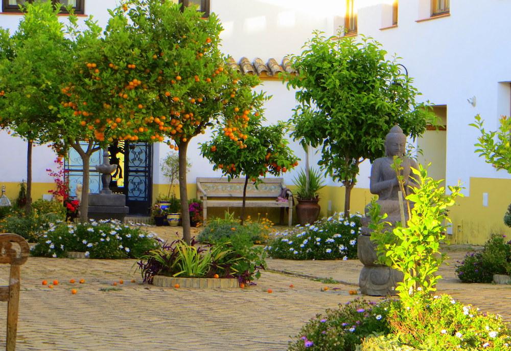 plaza de naranjas.JPG