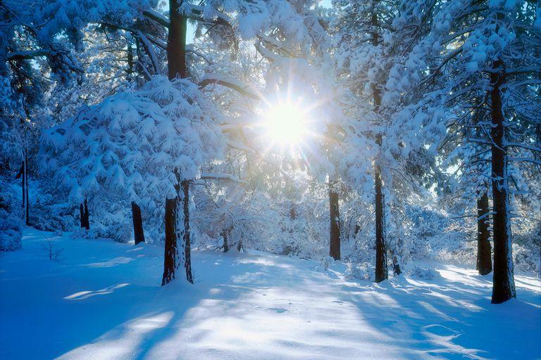 WinterSolstice-58da9d0f5f9b584683623db1.jpg