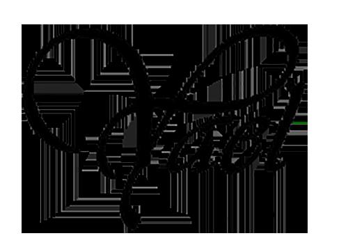 yael-logo