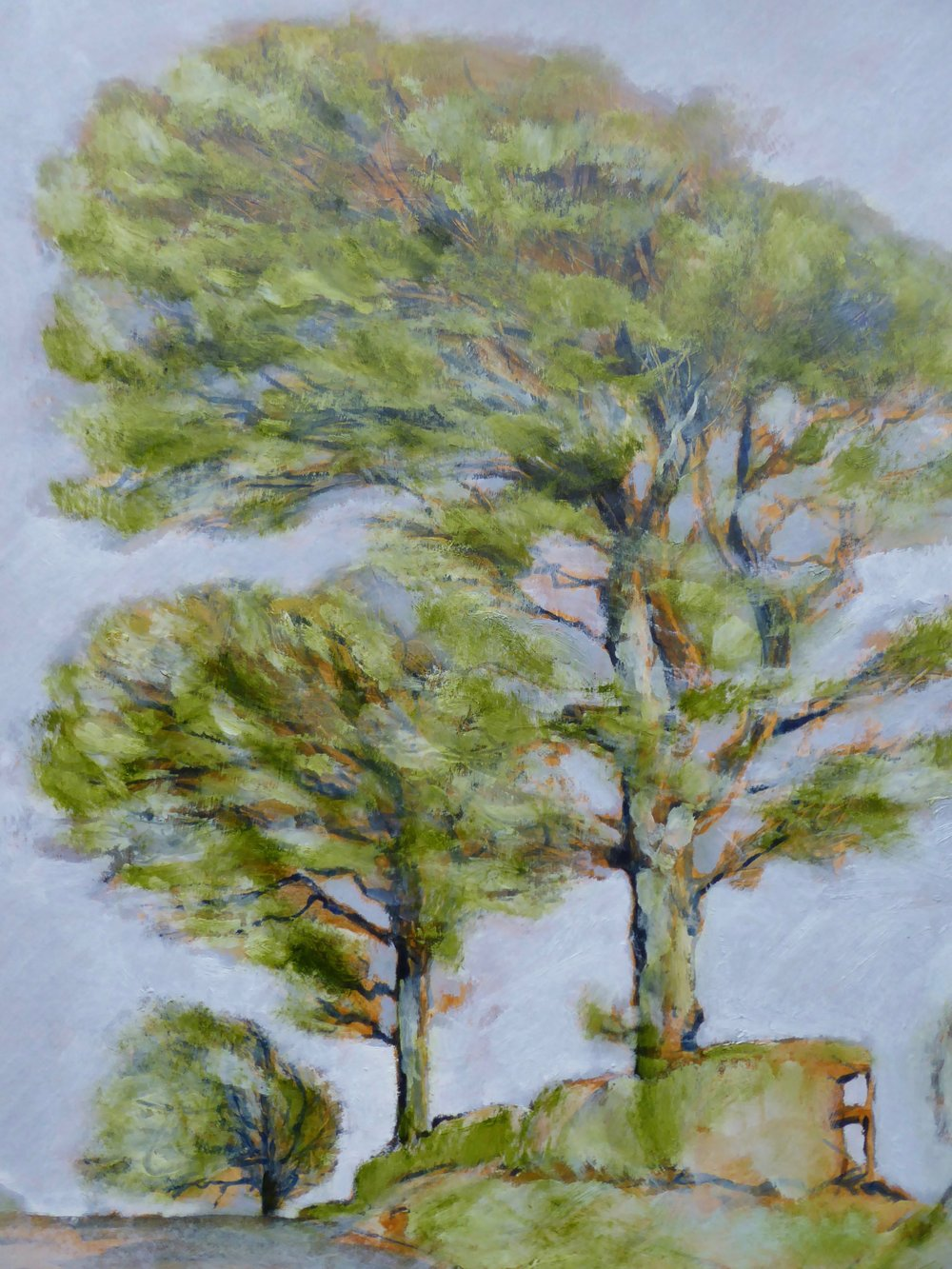 Three Beeches - Spring  oil on board 51 x 39 cm £550