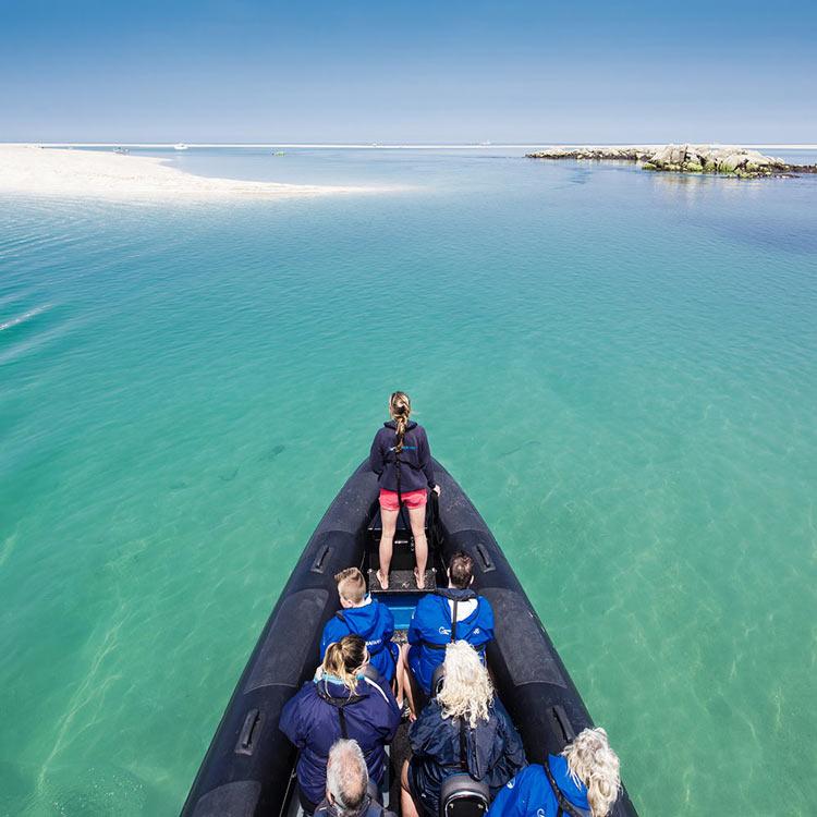 Minquiers RIB Boat Trip Jersey