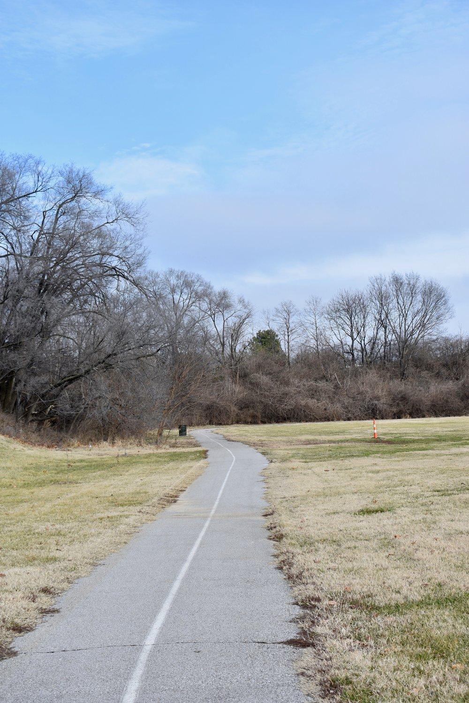 Francis R Slay Path