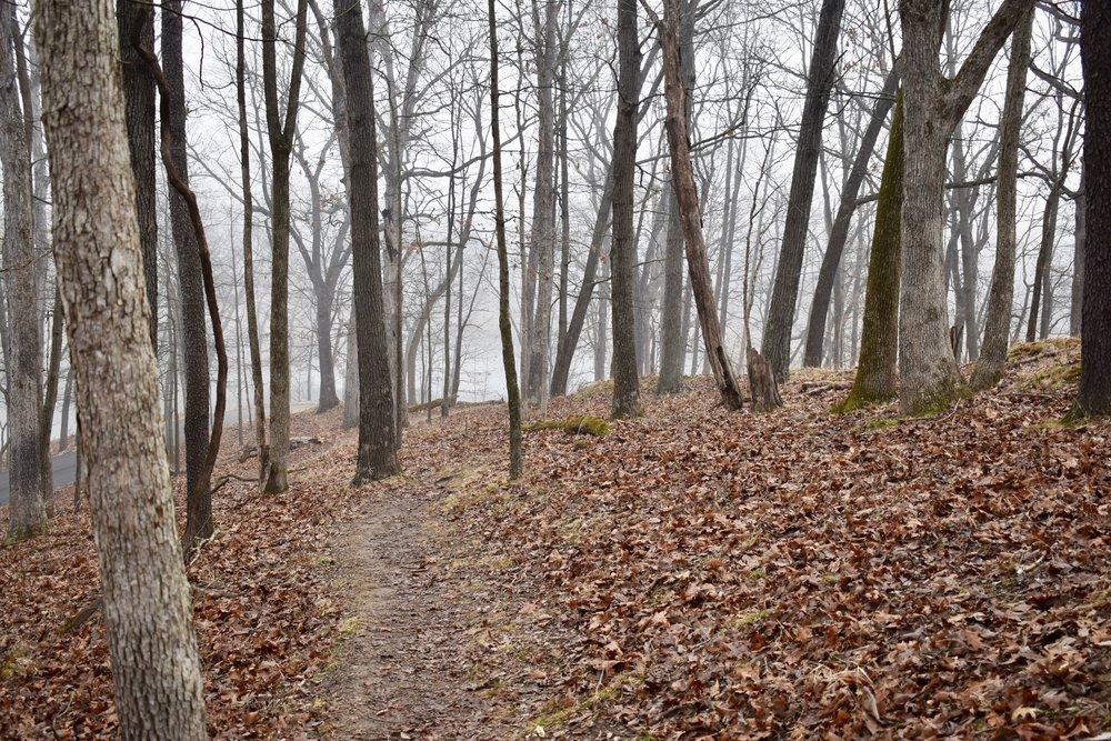 Lone Elk Trail Trail
