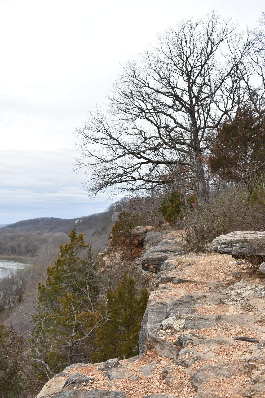Castlewood State Park River Scene Trail Overlook