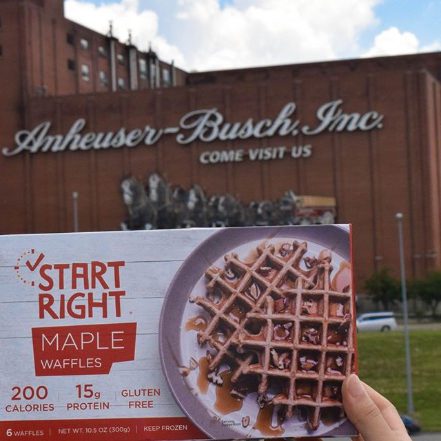 Who's Ready for the weekend?! #ThirstyThursday .  What's our goal right now? Be in Stl what Abe Froman is in Chicago just for a different product -- the Waffle Kings of St Louis. While we may never be the size of the STL giant, Anheuser Busch, we hope one day, we are  a household name in St Louis. If you haven't tried them yet, we recently released our Maple Belgian Waffles. The flavor is only offered in STL, and it is easily one of our favorites.  #startright #highproteinwaffles #highprotein #glutenfree #gfwaffles #glutenfreeliving #glutenfreelife #glutenfreestl #toasterwaffles #wafflebuns #wafflesliders #breakfast #healthybreakfast #healthyeats #bfhealth #eeeeats #convenient #healthylifestyle #proteinwaffles #highproteinlowcarb #thearchstl #arch #stlouis #ferrisbeuler #stlpride #startupstl