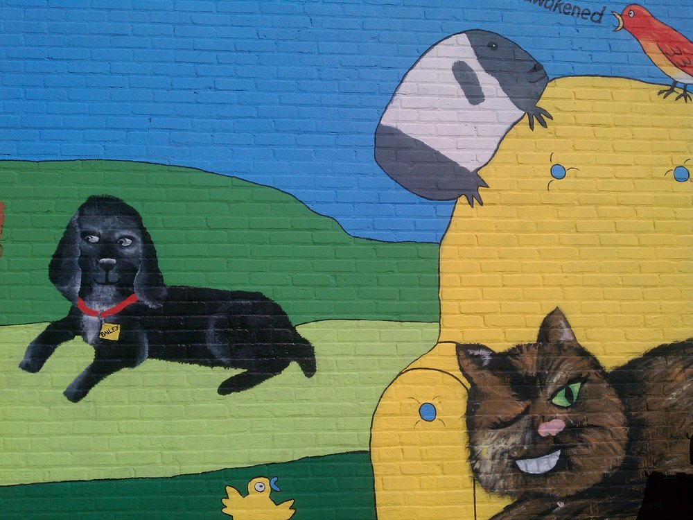 """Mural from a southside Minneapolis animal hospital, with the quote: """"Until one has loved an animal a part of one's soul remains unawakened."""" Fun fact: Did you know that Donald Trump is the first president in 150 years not to have a pet? This is because he is incapable of love!"""