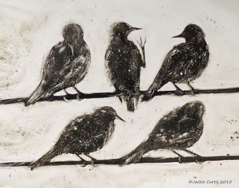Hanging on the Wire - Starlings