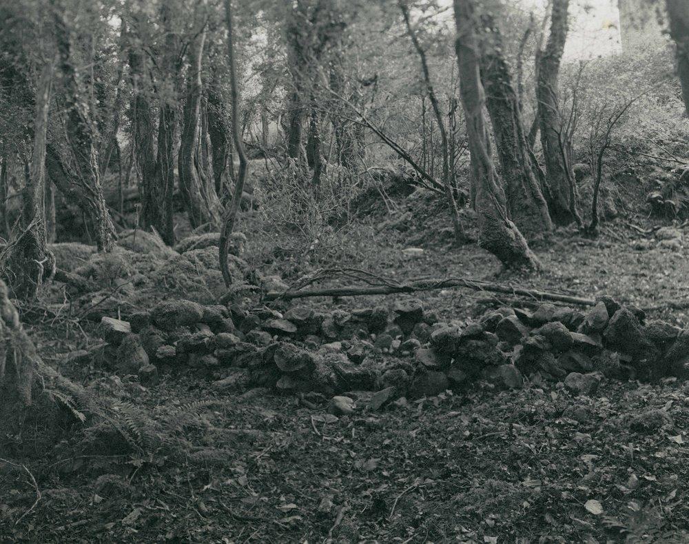 Burren_05.jpg