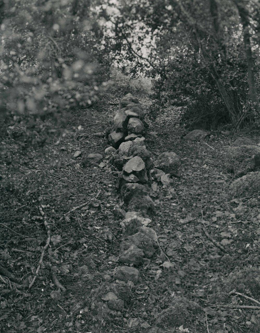 Burren_10.jpg