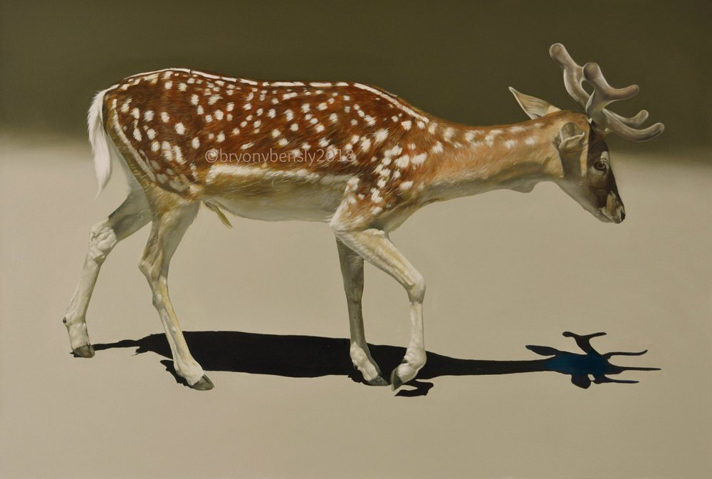 Fallow deer, 24 x 36 inches, oil on canvas