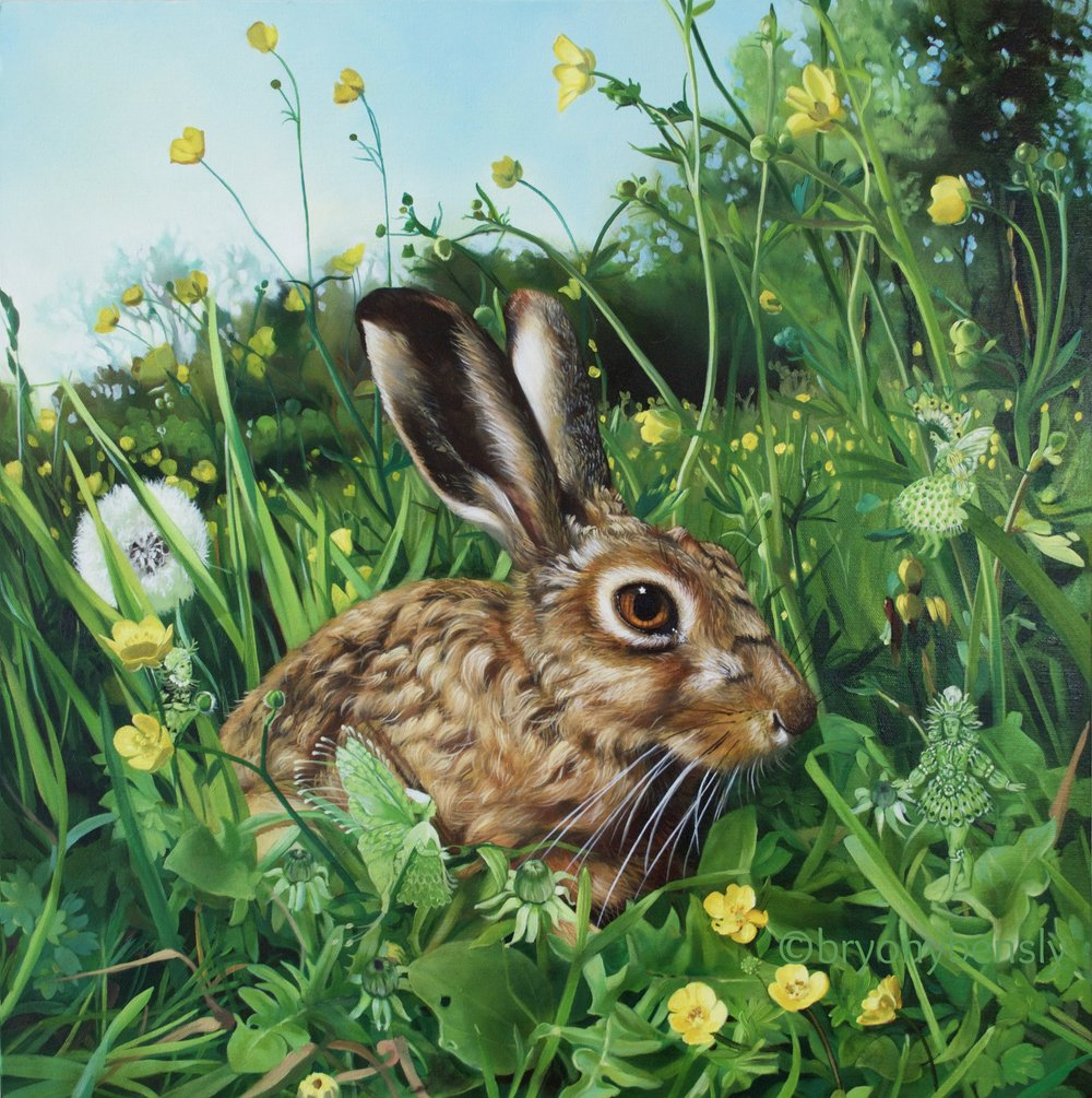 Spring Hare, oil on canvas, 24 x 24""
