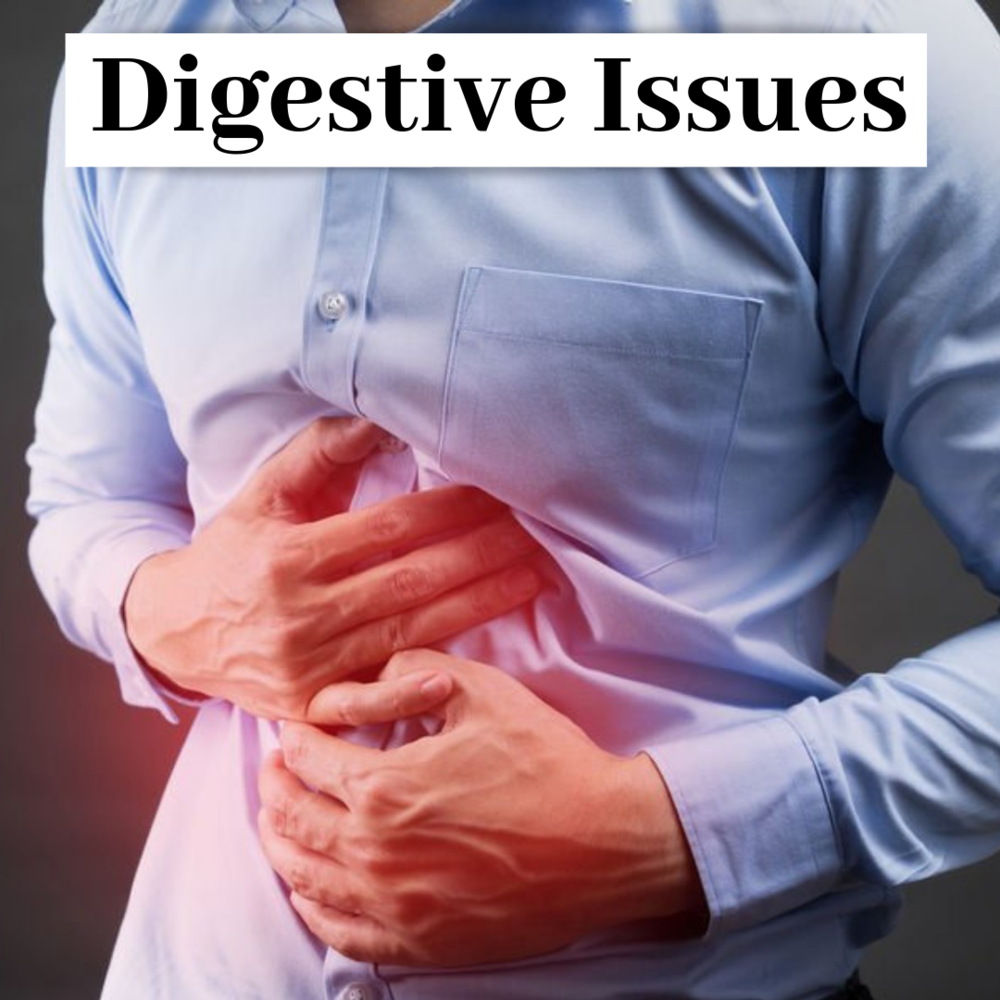 Chiropractic Research on Digestive Issues