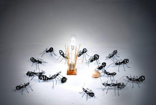 French Ants_2.jpg