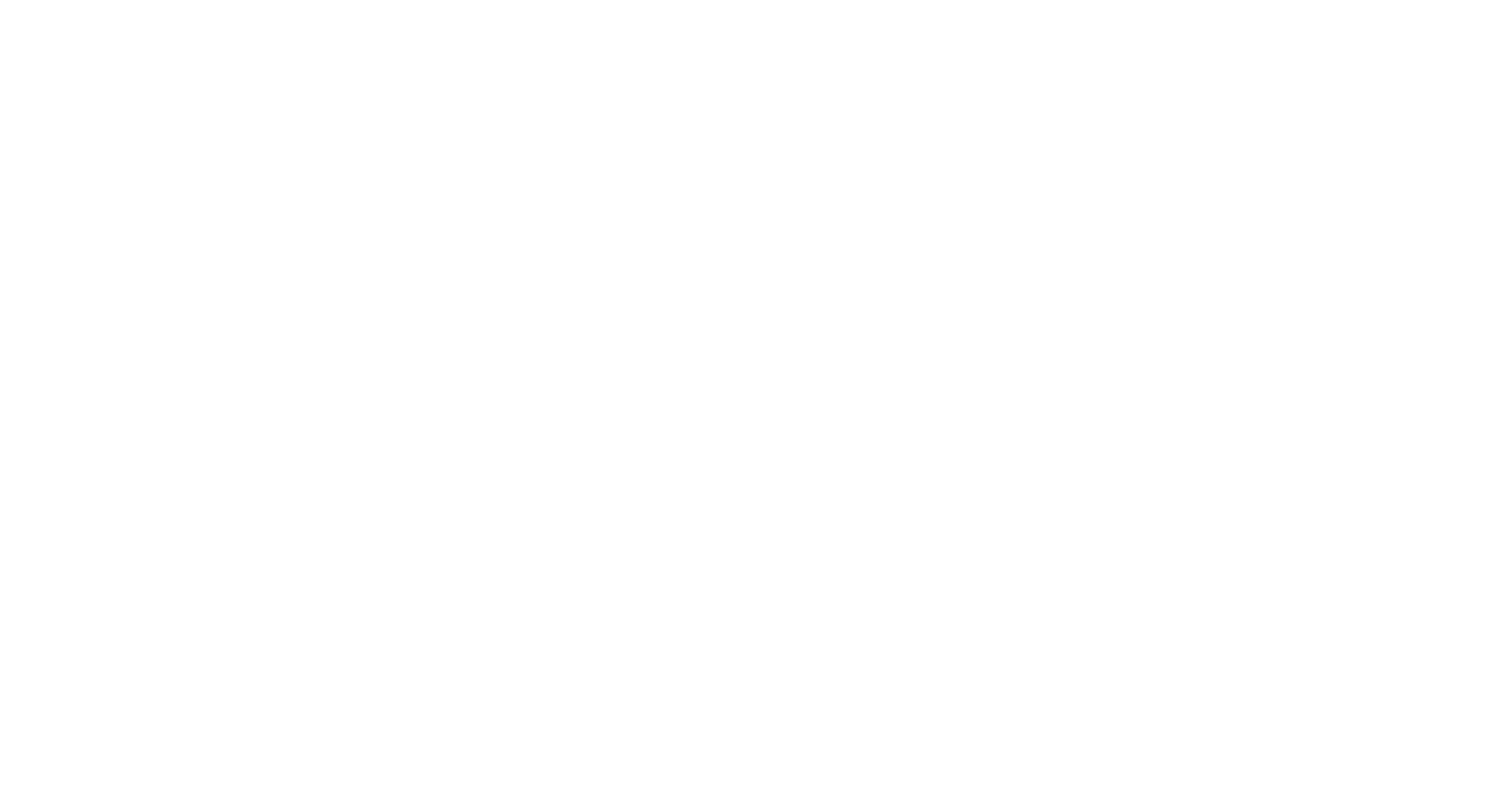 High Focus Institute