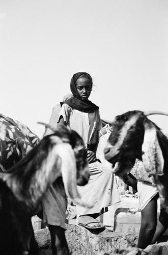 Herding Girl I - Naqa / Sudan, 2010, 40x50, Edition 5, 50 €