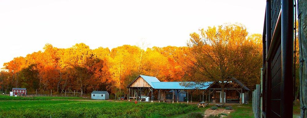 Farmstand4.jpg