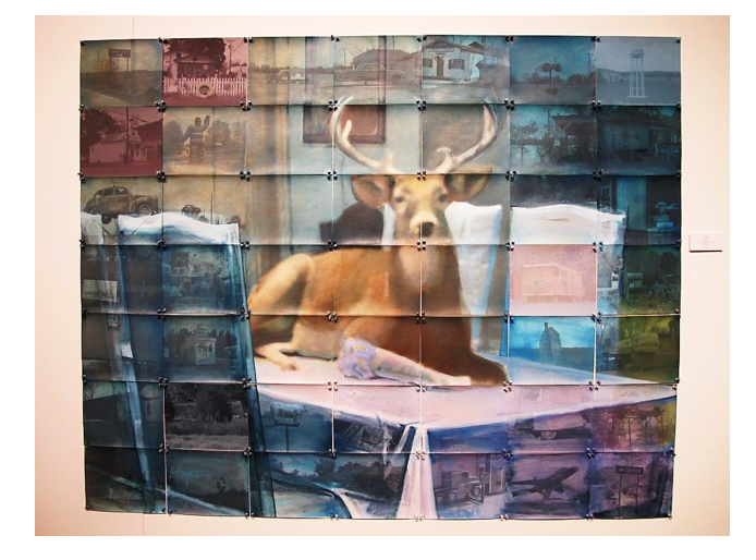 "'Deer (Blue)' 2007 ©  Randy Hayes. Oil on Photographs, Pushpins, Unique.  56"" x 70"""
