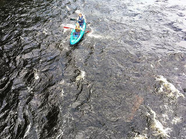 #kayak sur la #rivierejacquescartier sous le #soleil!  #lifeisgreat @parcjacquescartier  #stayhumbleridebig