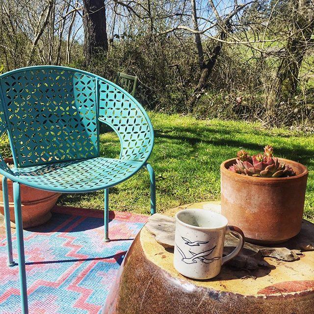 Especially digging my office today 🌞🌿🌼 . . .  #workfromhome #havelaptopwilltravel #petaluma #winecountry #slowliving #getoutside #grow #remotework #loveyourjob #girlboss #ladyboss #backyard #wild