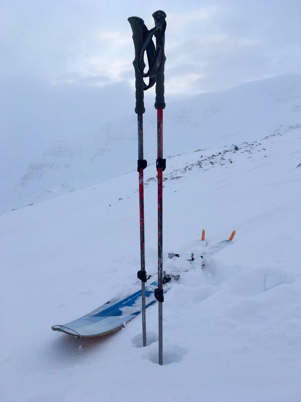 Black Diamond: Expedition 2 Adjustable Ski Poles/Black Diamond Element Skis