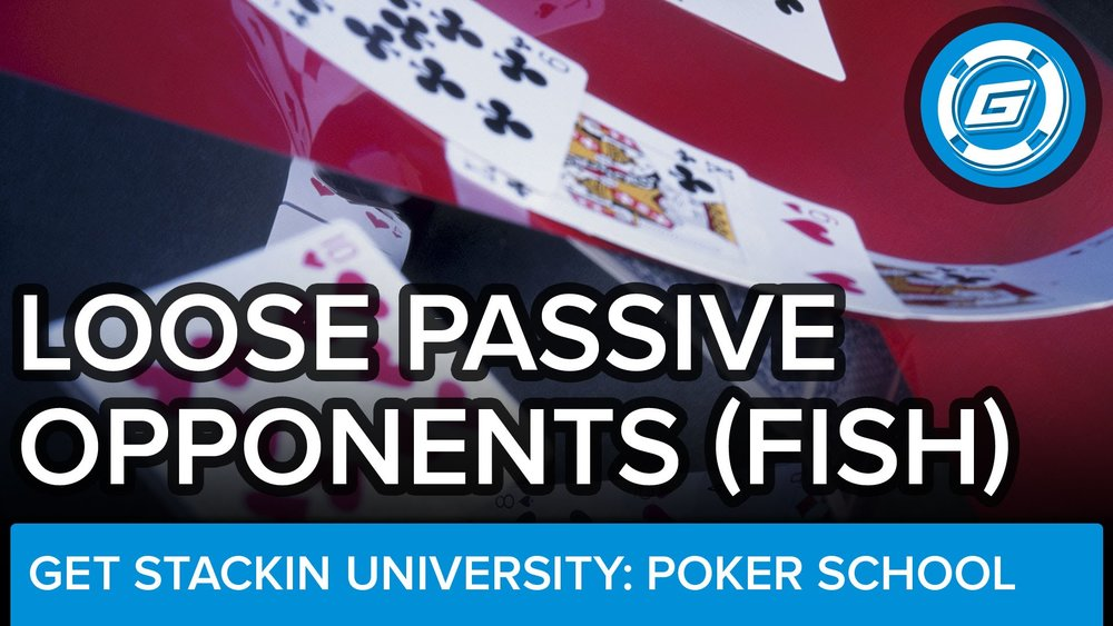 Loose Passive Opponent (FISH) - LESSON #19