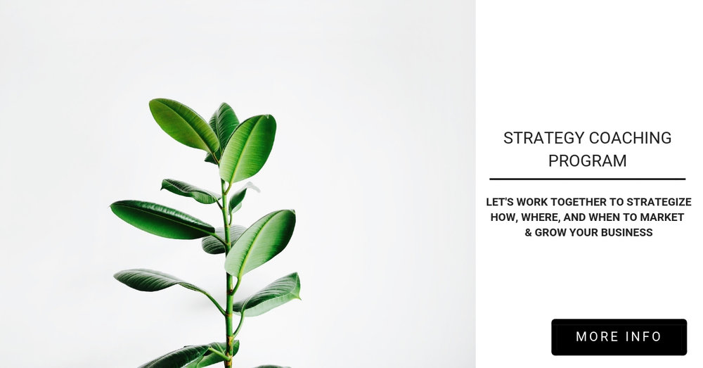 StrategyCoachingProgram.jpg
