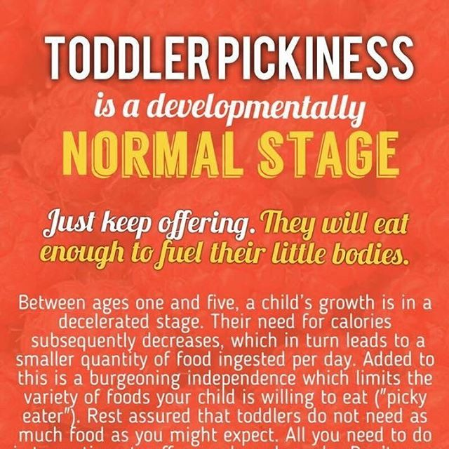 Picky eating is common amongst toddlers. Here are some tips for dealing with it! https://www.gastromommy.com/toddlers-kids/picky-eating #babyfoodie #blw #babyledweaning #babyledsolids #babyledfeeding #blwrecipes #blwideas #babies #toddlersandkids #gastromommy #pickyeating #eatinghabits toddlereatinghabits #foodquantity #dor #recipes #behavior #mealtime