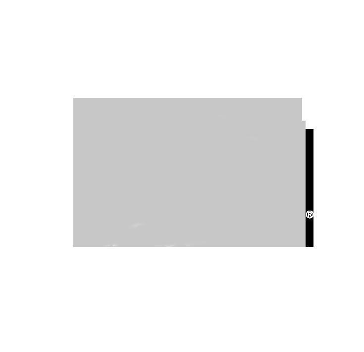 Fibulvetr_logo grey.png