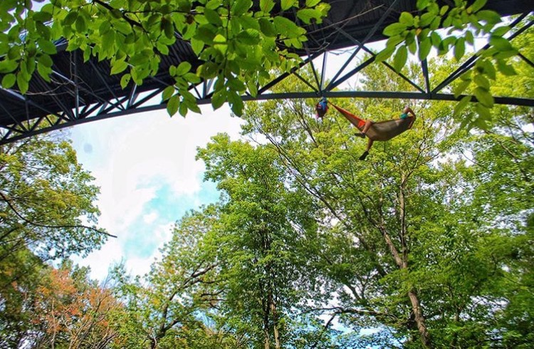 """Hammocking under the Little Mac bridge at Grand Valley State University""  -CB"