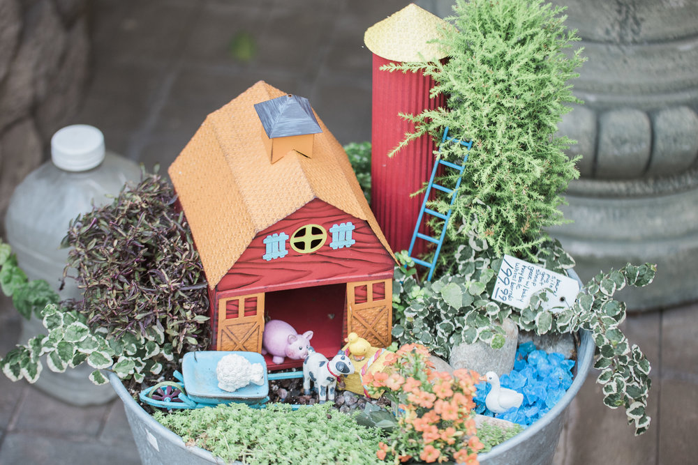 Miniature farm.
