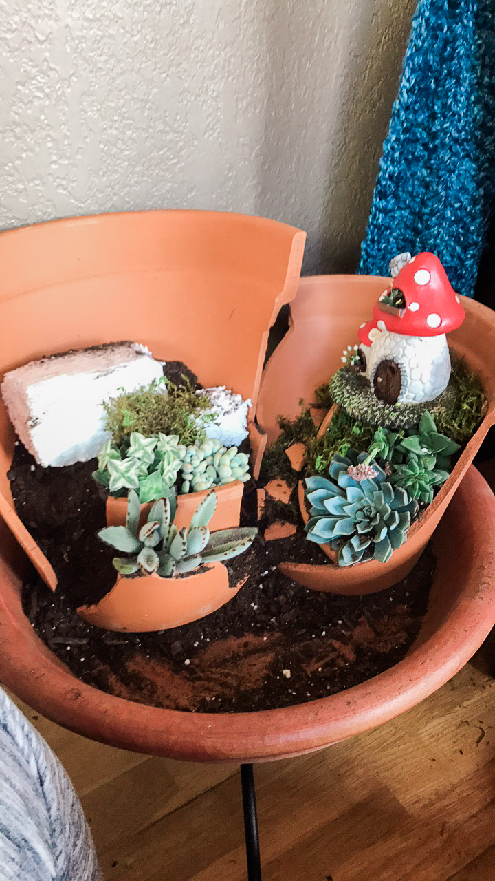 Layering plants with pieces of Terra Cotta