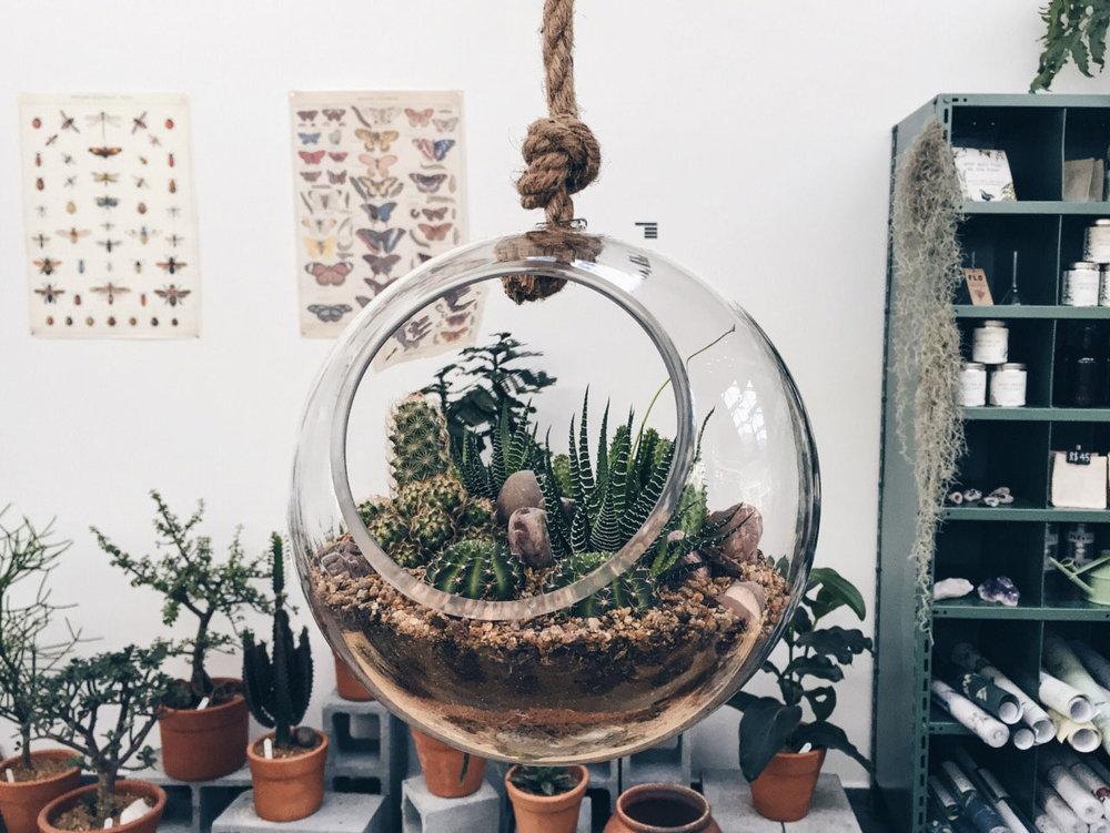Flo-Atelier-Botanico_02.jpg