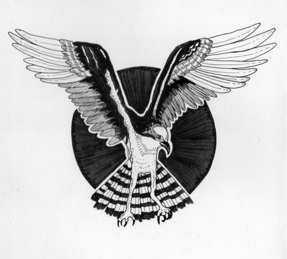 1 Osprey.jpeg