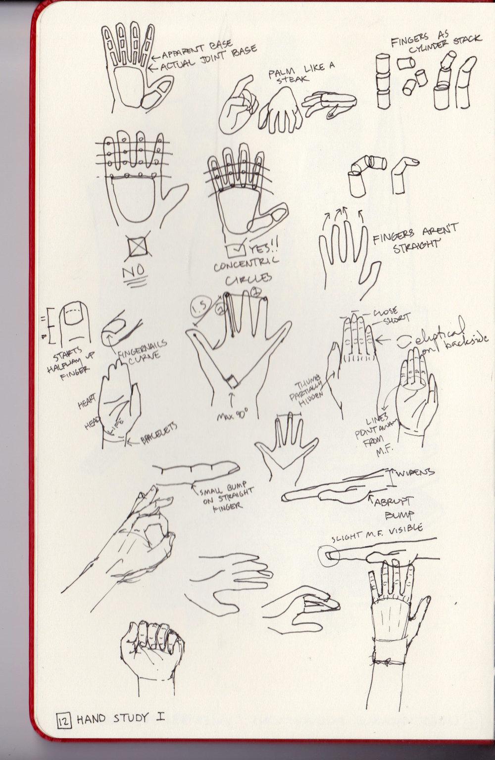 12 Hand Study.jpg