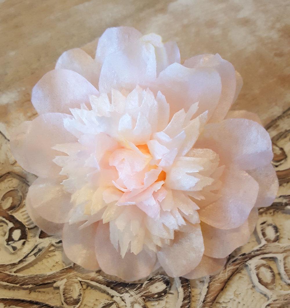 anemone peony.jpg