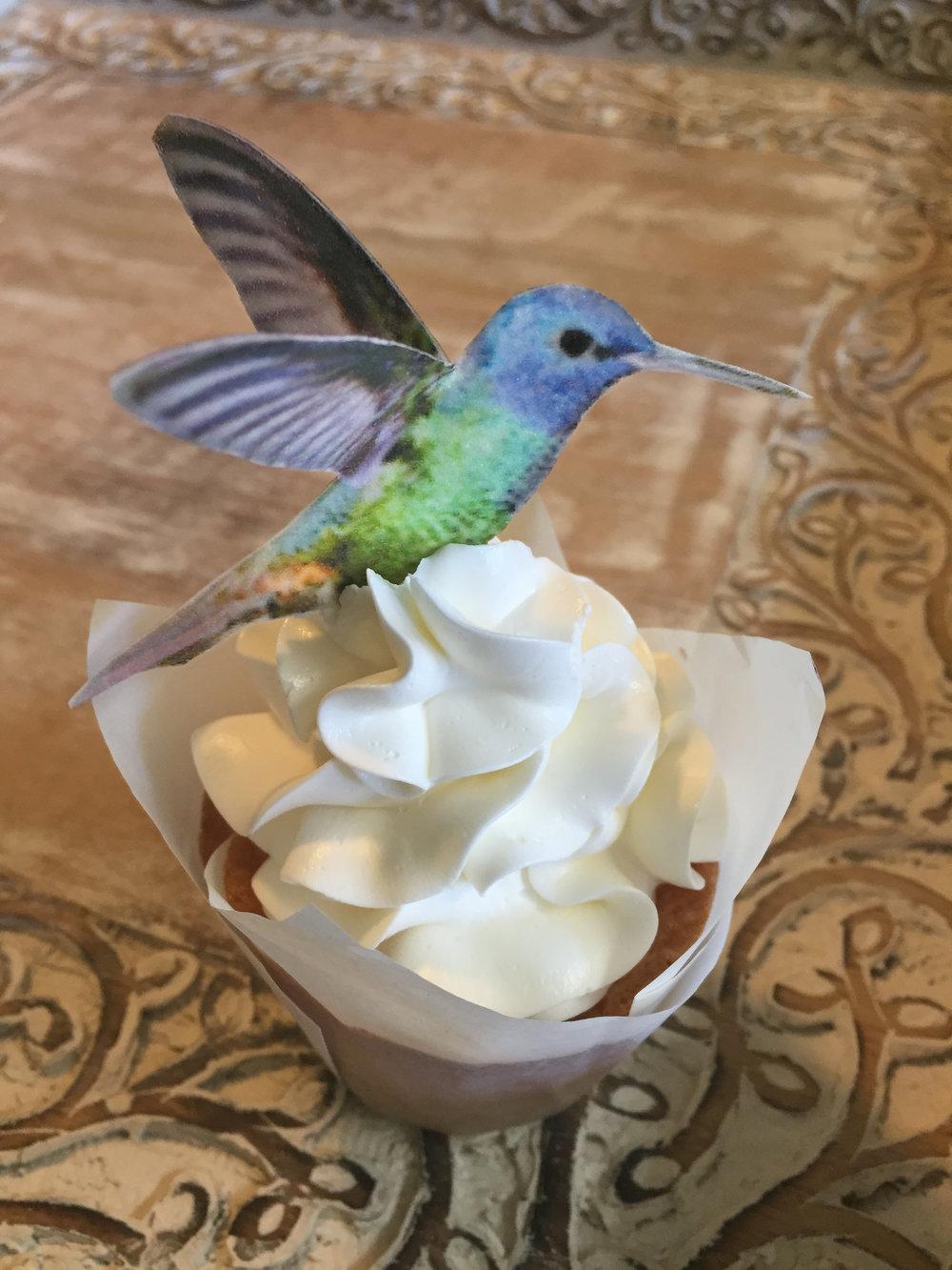 hummingbird cupcake1.JPG