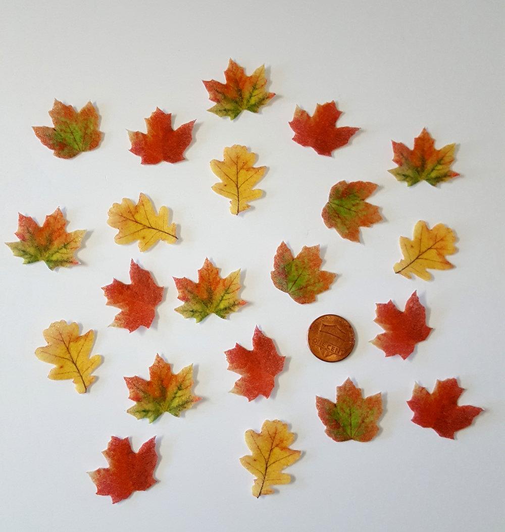 Mini Leaves.jpg