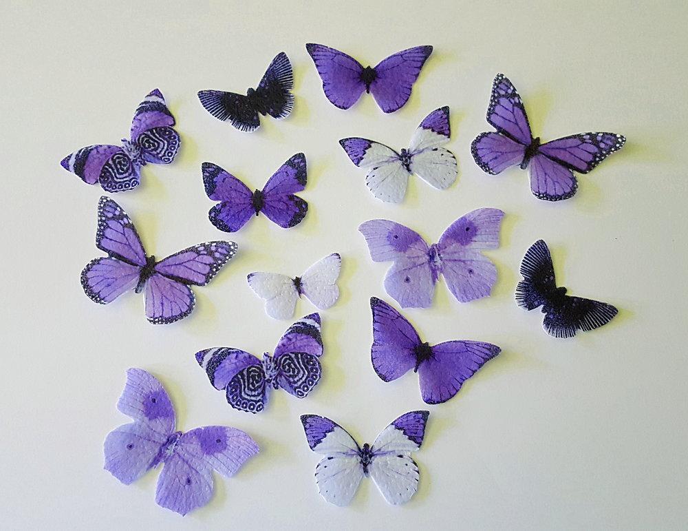 monochrome purple.jpg