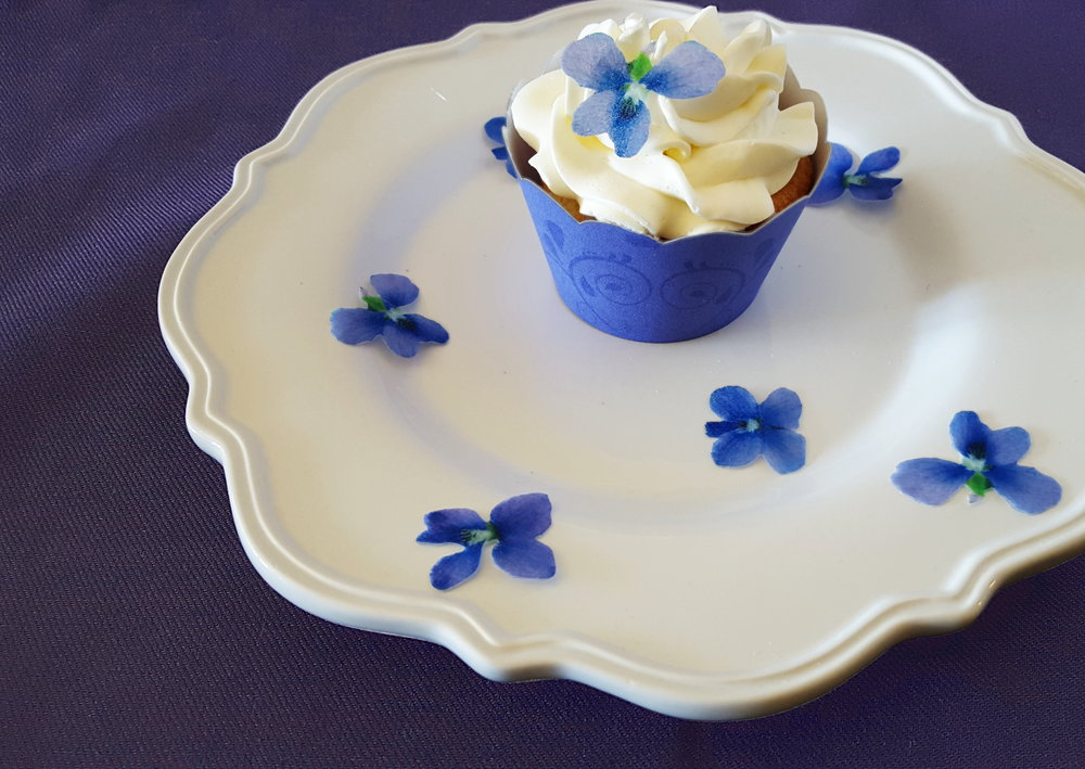 violet cupcake photo.jpg