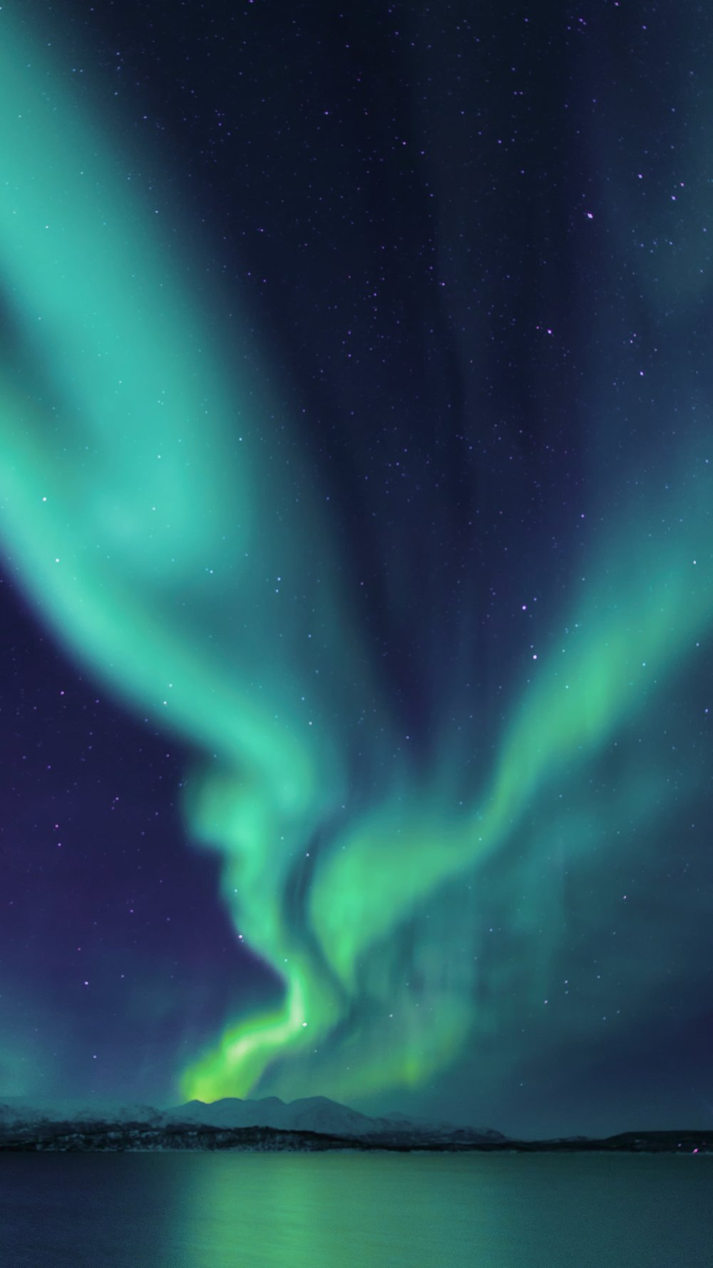 Take a flight to see the Northern Lights -