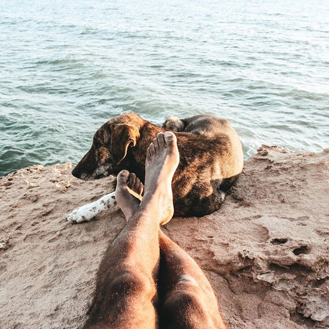 Dirty feet, sand everywhere, and the cutest damn dog by your side = living • • • • •  #tasteintravel #welltravelled #exploremore #bestvacations #goplayoutside #travelawesome #passportable #stayandwander #roamtheplanet #instatravel #travelblogger #aroundtheworldpix #forahappymoment #travelbug #traveldiary #mytinyatlas #travelblog #traveltips #bcctravel #travelwithme #traveljournal #dogswhohike #dogsofinstagram #traveldogs