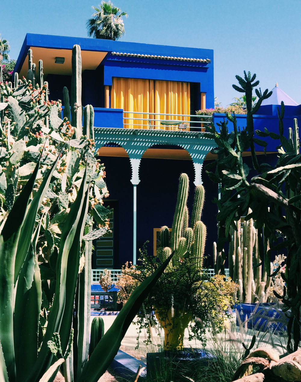 JARDIN MAJORELLE | A 12-ACRE BOTANICAL GARDEN CREATED BY PAINTER JACQUES MAJORELLE AND THEN TAKEN OVER AND PRESERVED BY YVES SAINT-LAURENT AND PIERRE BERGé.