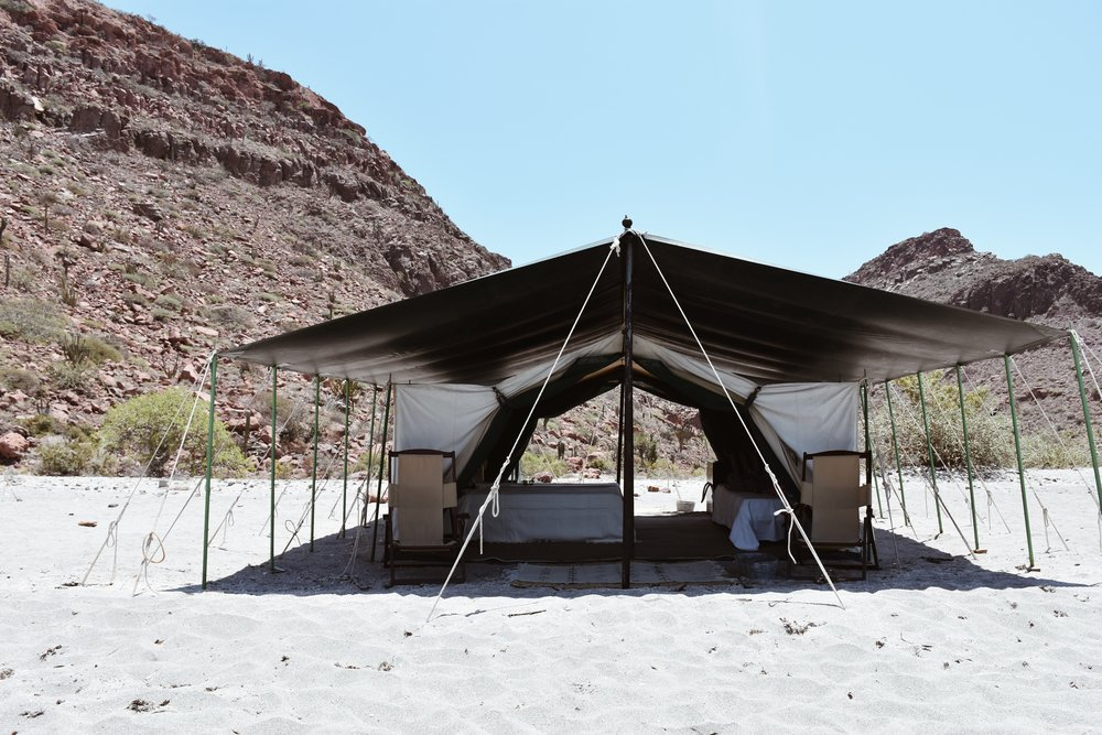The spacious, safari-style tents we called home for 2 nights.