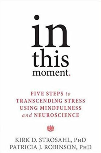 In This Moment by Kirk D. Strosahl and Patricia J. Robinson
