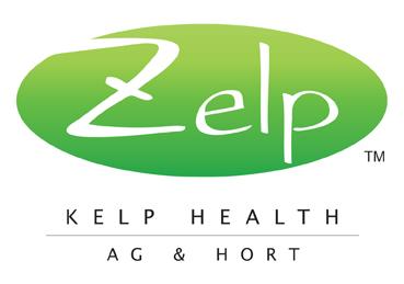 Zelp NZ Kelp logo
