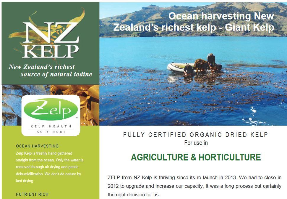 Zelp factsheet