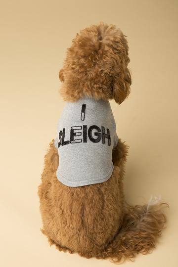 $39 I Sleigh