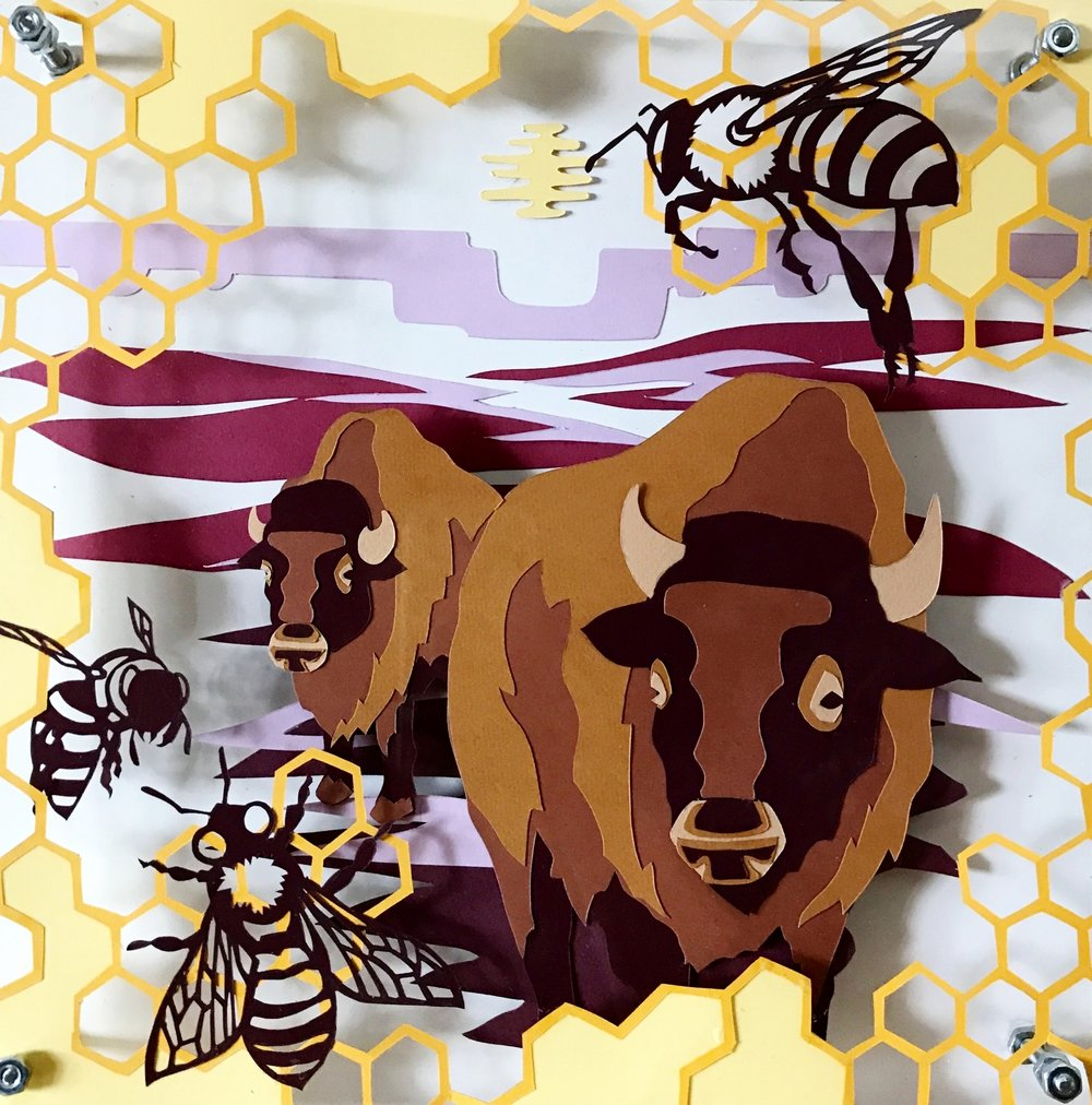Honey Bee & Bison